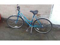 alpine emmelle lades bike