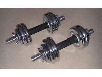 York Fitness 15kg Chrome Dumbell Set
