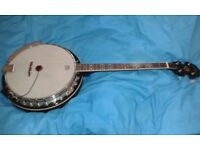 Boorinwood irish Tenor Banjo complete with hardcase.excellent condition.