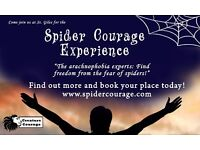 Amazing and Powerfully Effective Spider Fear Therapy, GET OVER YOUR FEAR IN A FEW HOURS!