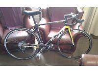Giant racing bike