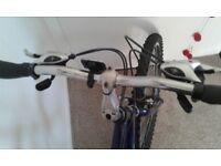 Saratoga mountain bike