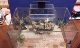 25 LITER TROPICAL AQUARIUM/ FISH TANK /PETS