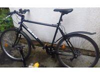 Kemmel Mountain Bike L for Men.