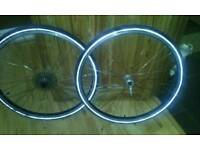 Road bicycle winter wheels