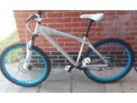 giant brass 1 mountain dirt jump bike