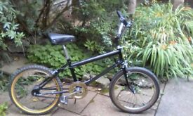 Vintage Raleigh Grifter bike