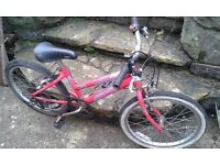 Raleigh girls mountain bike