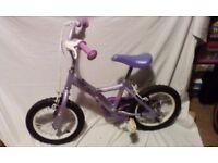 "Girls 14"" Apollo Bike"