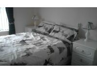 Double Drawer Divan & Headboard