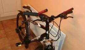 Daytona python mountain bike