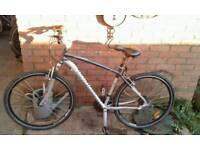 Specialized bike hybrid