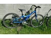 Giant mountain bike 24 inch wheels