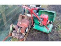 Suffolk cylinder mowers