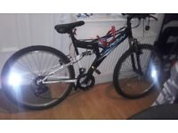 used raleigh bicycle for sale
