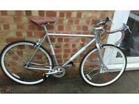 Brand new out the box single speed racer
