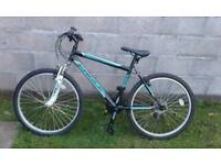 Mountain bicycles 45 each