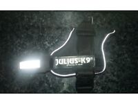 For sale julius k9 harness
