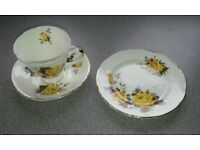 "Pretty and delicate Floral Pattern, ""Argyle"" bone china Tea set."
