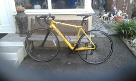 Gents racing bike lightweight alloy frame
