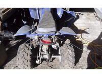 50cc Auto Quad Spares or Repair