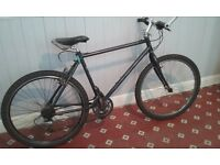 MARIN BEAR VALLEY SE MOUNTAIN BIKE - Afterburner double butted frame, classic 90's, great condition