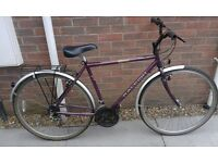 Gents Raleigh Pioneer Classic Hybrid City Commuter Touring Bike