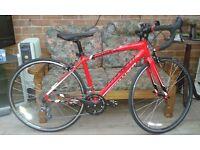 Specialized Allez Jr 650c Junior Road Bike