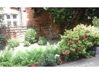 LARGE BRIGHT BEAUTIFUL 1 DOUBLE BEDROOM GARDEN FLAT NEAR ZONE 2 TUBE, 24 HOUR BUSES & SHOPS