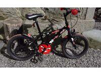 Boys Apollo Urchin Bike