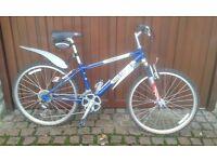 Ridgeback 602SLS boys mountain bike