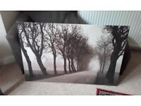 Extra Large Ikea Canvas Picture