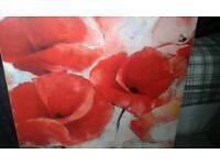 Poppie canvas