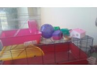 Large cage and small cage plus extras