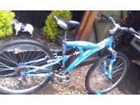 Unisex Apollo mountain bike