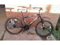 Mountain bicycle helion double disc