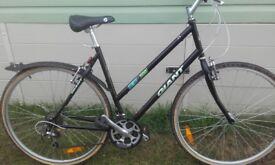 Giant bike ladies x500