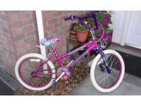 Girls Universal BMX Style Bike Bicycle