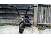 Mini Rocker BMX bike 24 Carat Rocker 2 Industry Phosphate, stunt pegs, great condition bike £75