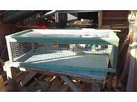 4ft x 2ft tortoise / guinea pig run