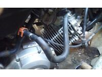 Yamaha ybr 125 engine runs perfect 150 no less