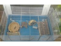 Large pet cages and accessories. Hamster, rat, gerbil ect.