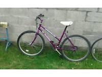 Mountain bicycle ladies bike