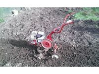 ROTOVATOR / ROTAVATOR HIRE ( Wolseley Merry Tiller Major ) HIRE