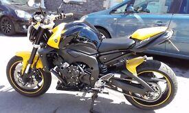 2010 Yamaha FZ1N - Immaculate Condition