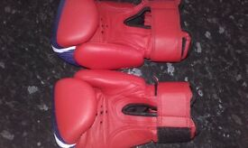 Head guard/boxing gloves