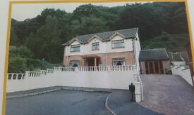 To rent £100/person/week/bedroom. Executive 4 bed detatched house. All mod cons All bills inclusive