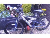 Boy's Apollo bike