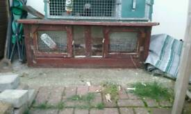Ferrit hutch/rabbit hutch