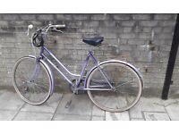 purple ladies bicycle